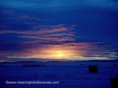 Beautiful Farm Sunset