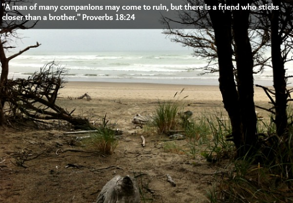 Bible Verse About Freindship
